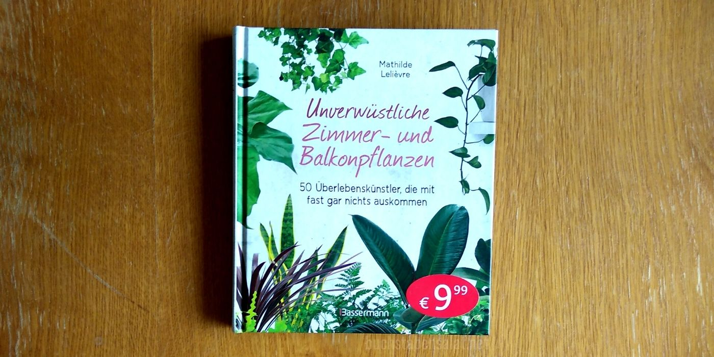 Unverwüstliche Zimmer- und Balkonpflanzen. Das Buch liegt mit dem Cover zum Betrachter auf einem hellbraunen Tisch mit Kratzspuren. In der rechten unteren Ecke des Buches klebt ein großer, ovaler roter Aufkleber mit dem Preis 9,99 €.